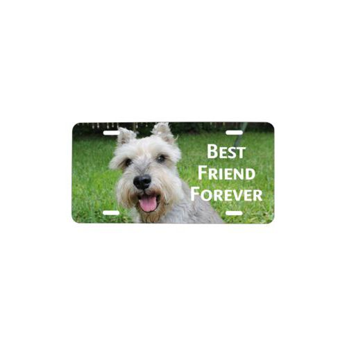 "Custom plate personalized with photo and the saying ""Best Friend Forever"""