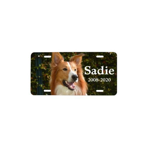"Custom license plate personalized with photo and the saying ""Sadie 2008-2020"""