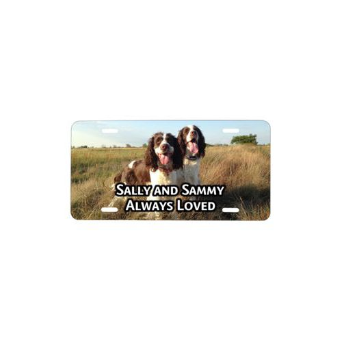 "Custom license plate personalized with photo and the saying ""Sally and Sammy Always Loved"""